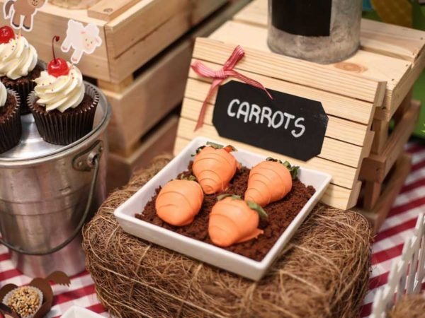 RC Kids_carrots personalized buffet_Robert Cutty Kids-2